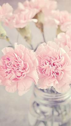 girly iphone wallpaper floral pretty pink flowers pastel wallpaper iphone background