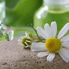 corso fiori di bach on line corso fiori di bach napolideal it