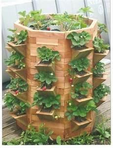 jardin potager sur terrasse jardini 232 re 224 fraisiers bricolage plantation fraisiers