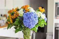 fiori a casa curare i fiori in casa piante appartamento come