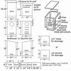 flying squirrel house plans squirrel houses plans medem co bird house plans