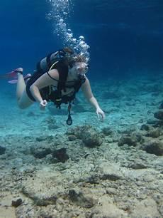 dive cozumel jen s updates scuba diving cozumel