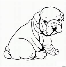 baby pitbull coloring page free coloring pages