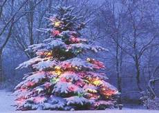 merry christmas winter nature background wallpapers desktop nexus image 1249259