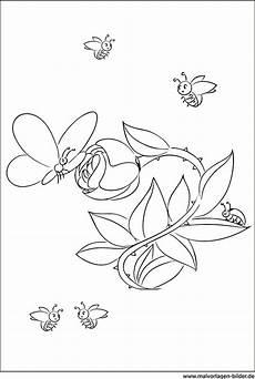 Ausmalbilder Blumen Schmetterlinge Malvorlagen Blumen Schmetterlinge Coloring And Malvorlagan