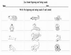 zoo animal worksheets kindergarten 14321 mrs bohaty s kindergarten kingdom all things zoo