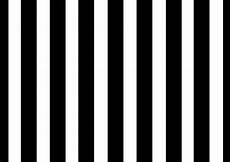 8x8ft Black White Stripes Wall Photography by The Sun King Of Fashion Marc