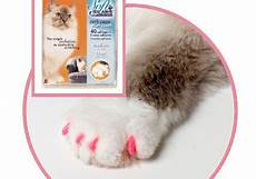 cat claw covers petskaboodle cool pet lovers gifts