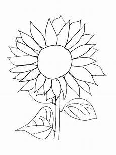 sunflower coloring pages and print sunflower