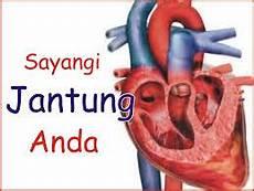 Ciri Ciri Gejala Awal Penyakit Jantung Koroner Obat