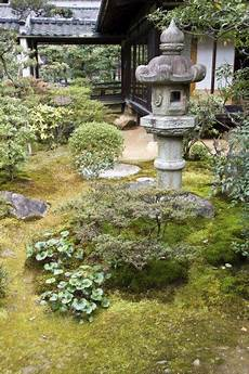 Zen Garten Pflanzen - what is a zen garden information and tips for creating