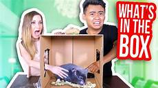 what s in the box challenge ft jen smith youtube