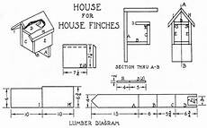 finch bird house plans finch bird house plans dimensions of finch house plans