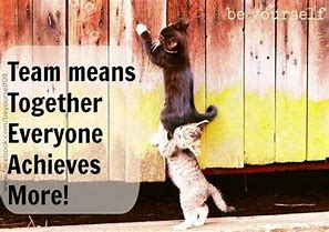 Image result for Business Funny Teamwork Quotes