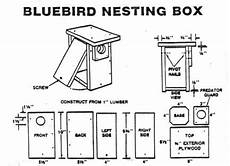 eastern bluebird house plans free invite a piece of the sky to your back yard chelsea