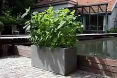 sichtschutz mit pflanzk 252 beln im garten auf balkon und