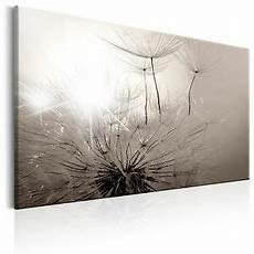 wandbilder grau weiss vlies leinwand bilder wandbilder pusteblume natur grau
