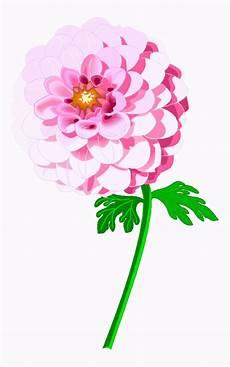 Malvorlagen Kinder Rosa Sehr Schoene Rosa Blume Ausmalbild Malvorlage Blumen