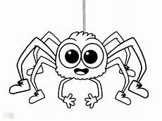 Window Color Malvorlagen Spinne Coloring Pages Printable At Getcolorings