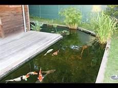 bassin koi interieur le bassin a koi d antoine dans le bordelais