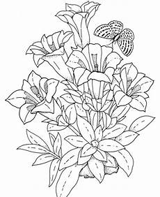 realistic pages coloring pages