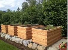 bac pour arbuste de jardin hugelkultur en bac comment entretenir un potager en carr 233