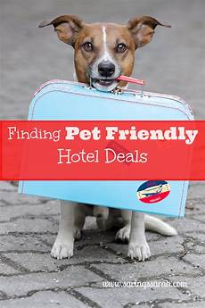 17 memberships that include travel discounts earning