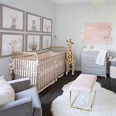 Baby Bedroom Ideas Pink And Grey by Pin On Baby Nursery Ideas