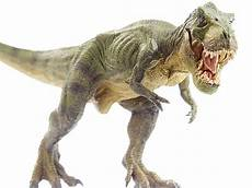 Malvorlagen Dinosaurier T Rex Vk Top 60 Tyrannosaurus Rex Stock Photos Pictures And