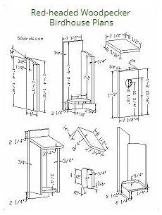 woodpecker house plans pileated woodpecker birdhouse plans bird houses wood