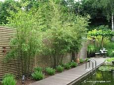 Sichtschutz Garten Pflanzen Suche Garten