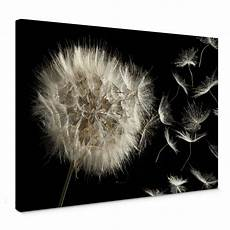 leinwandbild pusteblume leinwandbild pusteblume wall art de
