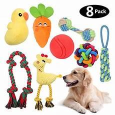 Hundespielzeug Für Große Hunde - homemall hunde spielzeug f 252 r mittelgro 223 e kleine hunde