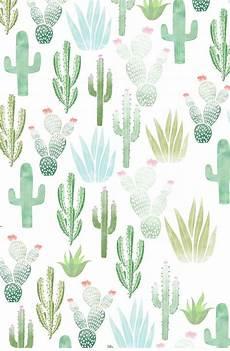 aesthetic cactus iphone wallpaper i frickin cacti wallpaper wallpapers in 2019