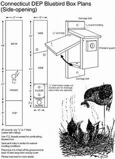 plans for bluebird houses eastern bluebird house plans eastern bluebird bluebird