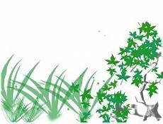Membuat Animasi Pohon Tumbuh Softtutor