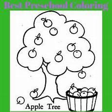ausmalbilder malvorlagen apfelbaum kostenlos zum