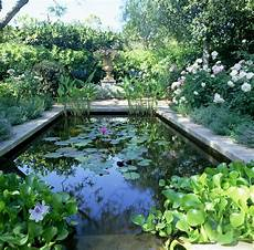 Comment Entretenir Un Bassin De Jardin