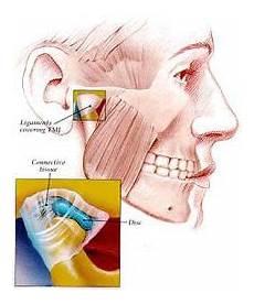 Dentistaz Gambar Gambar Proses Membuka Dan Menutup Mulut