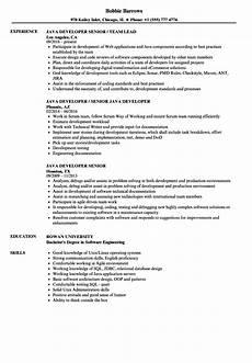 java developer senior resume sles velvet