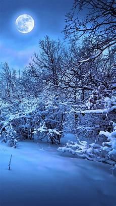 Winter Winter Background