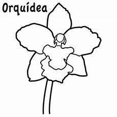 dibujo de la flor nacional de venezuela la flor nacional de colombia para colorear imagui