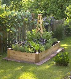 creating our first vegetable garden advice please driven by decor