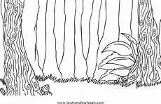 Malvorlagen Urwald Quest Foresta Parco Gratis Malvorlage In Diverse Malvorlagen