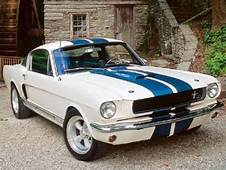 Ford Mustang Shelby GT350 1965 1966 Muscle Cars Pictures