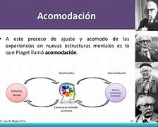 Image result for acomodadizp