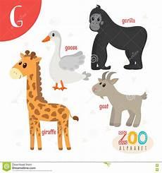 animal en g 30218 letter g animals animals in vector abc boo stock vector illustration of