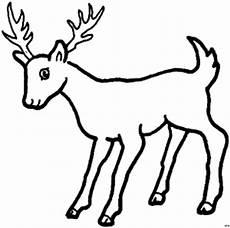 Malvorlagen Tiere Kostenlos Jung Hirsch Jung Ausmalbild Malvorlage Tiere