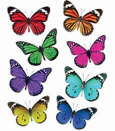 woodland whimsy butterflies printable cut outs