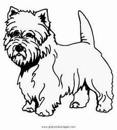 Ausmalbilder Schleich Hunde Westie Gratis Malvorlage In Hunde Tiere Ausmalen